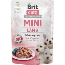 "Notebook HP 250 G8 15,6""FHD/i5-1035G7/8GB/SSD256GB/IrisPlus Silver"