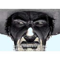 Ładowarka sieciowa Acme CH206 3 porty USB, 3,4A (17W), szybka
